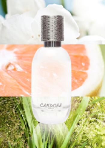 Parfum sur mesure Candora